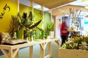 maison et object groen