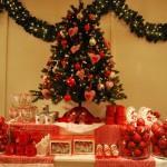 Kerstboom zetten
