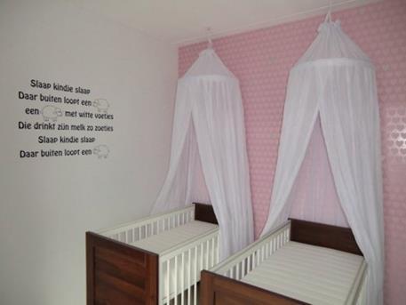 Babykamer Ideeen Muur : Leuke voorbeeld voor eentweeling babykamer voor meisjes