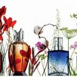 Lampe Berger Paris, een inspirerende geur- en sfeerbeleving!