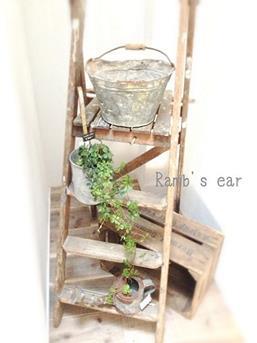 ladder tuinhoekje