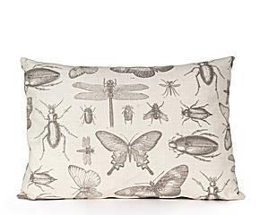kussen vlinders insecten