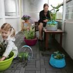 Vijver zonder tuin