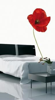 feng shui slaapkamer