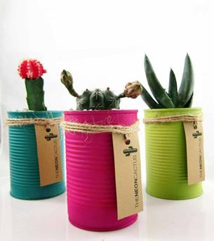etsy DIY cactus in a can