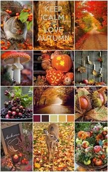 http://www.interieurinspiratie.nl/wp-content/uploads/2014/10/herfst-collage-653x1032.jpg