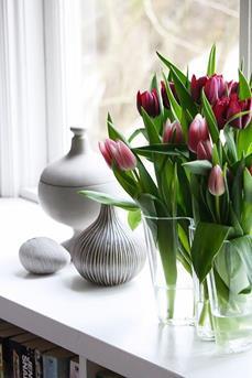 bloemen vensterbank