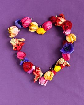 209861 Springflowering Bulbs WEB