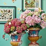 De wondere wereld van hortensia