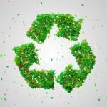 5 tips voor het creëren van een duurzame tuin