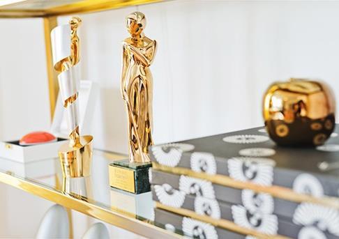 Filmprijzen die Anika in de wacht sleepte met haar films