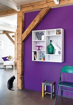 paarse muur