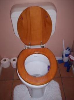 Interieur inspiratie van saaie piet tot design interieur inspiratie - Inrichting van toiletten wc ...