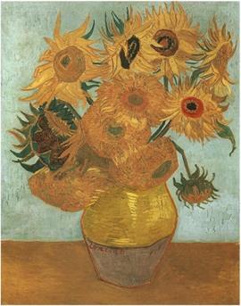 zonnebloemen rembrandt