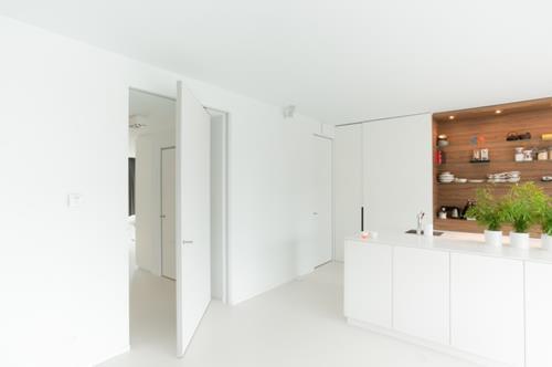 moderne-pivoterende-deur