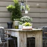 Tuintrends najaar 2015: Comfortabel & Luxe, de Nieuwe Wildernis en de Kleurrijke Tuin