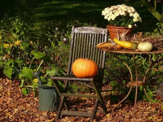 pompoen stoel