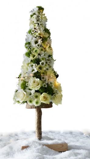 Chrysant_kerstboom WEB