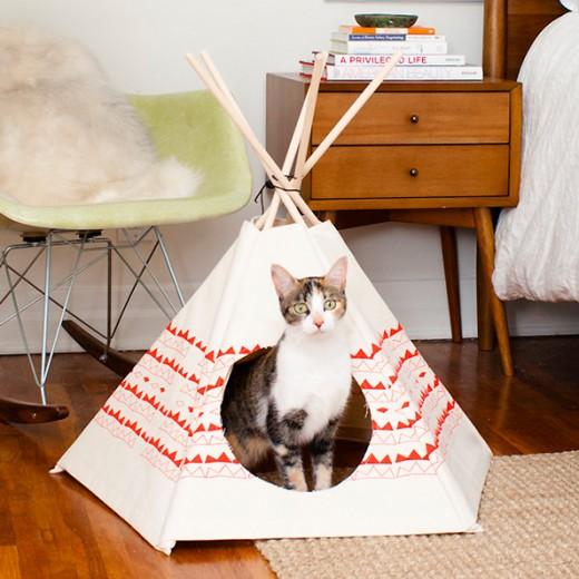 kattenhuis tent