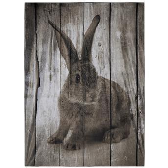 plaid konijn