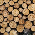 Zelf aan de slag met steigerhout en pallets: vier voorbeelden