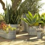 verzinkte metalen vaten, bakken & emmers als plantenbakken