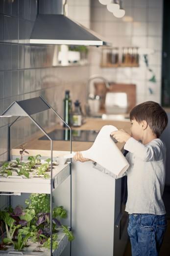 02_PH133373_IKEA_indoor_gardening