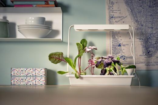 04_PH133366_IKEA_indoor_gardening