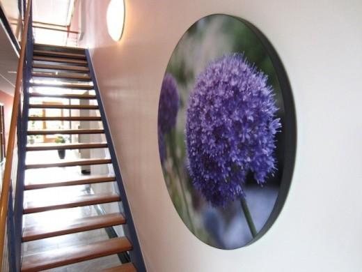 wand panel bloem