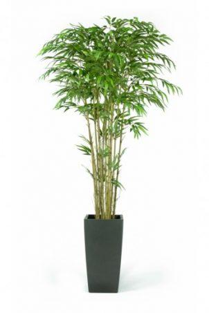 Kunstplanten voor in de huiskamer