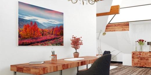 showcase-room_forex_landscape