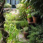 Extra ruimte creëren met blokhut of tuinhuis