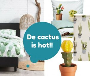 De cactus is hot