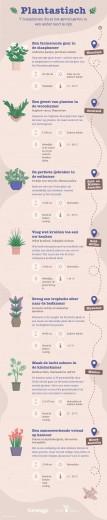 7 huisplanten die voor een vakantiesfeer zorgen
