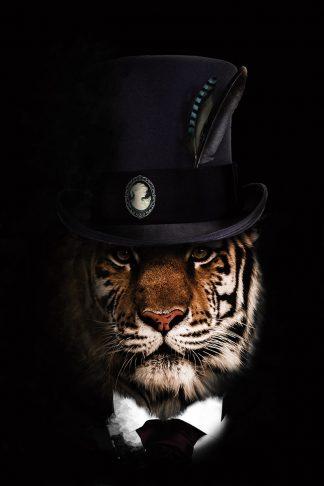 dierenposter leeuw